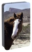 Lake Mead Mustang Portable Battery Charger