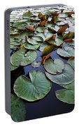 Lake Plant Portable Battery Charger