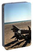 Lake Superior Driftwood Portable Battery Charger