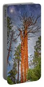 Lake Tahoe Trees On 89  Portable Battery Charger