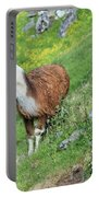 Lama In Geiranger Portable Battery Charger