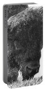 Lamar Valley Bison Black And White Portable Battery Charger