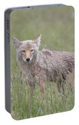 Lamar Valley Coyote Portable Battery Charger