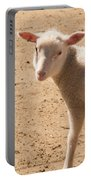 Lamb Looking Cute. Portable Battery Charger