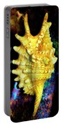 Lambis Digitata Seashell Portable Battery Charger