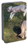 Lambs Frolicking Portable Battery Charger