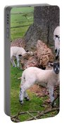 Lambs Portable Battery Charger