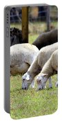 Lambswool Portable Battery Charger
