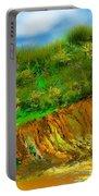Landscape 012711 Portable Battery Charger