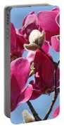 Landscape Pink Magnolia Flowers 46 Blue Sky Magnolia Tree Portable Battery Charger