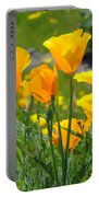 Landscape Poppy Flowers 5 Orange Poppies Hillside Meadow Art Portable Battery Charger