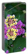 Lantanna's Blooms Portable Battery Charger