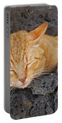 Lanzarote Ginger Portable Battery Charger