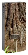 Large Cypress Tree Trunk In Carmel Mission-california  Portable Battery Charger