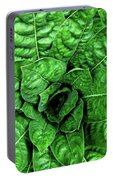 Large Green Display Of Concentric Leaves Portable Battery Charger