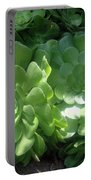 Large Green Succulent Plants Portable Battery Charger