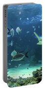 Large Sawfish And Other Fishes Swimming In A Large Aquarium Portable Battery Charger