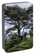 Large Trees At Chateau De Chaumont Portable Battery Charger