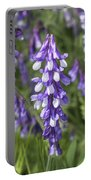 Larkspur Portable Battery Charger