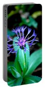 Last Flower In The Garden Portable Battery Charger