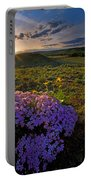 Last Light Of Spring Portable Battery Charger