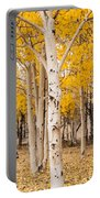 Last Of The Aspen Leaves Portable Battery Charger