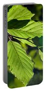 Last Of The Summer Leaves Portable Battery Charger