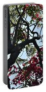 Late Afternoon Tree Silhouette With Bougainvilleas I Portable Battery Charger