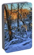 Late Afternoon Winter Light Portable Battery Charger