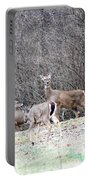 Late Winter Whitetails Portable Battery Charger
