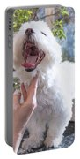 Laughing Adorable White Dog Is Groomed Portable Battery Charger