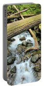 Laughingwater Creek Portable Battery Charger