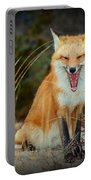 Laughing Fox Portable Battery Charger