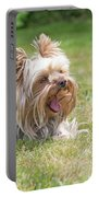 Laughing Yorkshire Terrier Portable Battery Charger