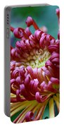 Lava Chrysanthemum Portable Battery Charger