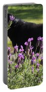 Lavender And Black Lab Portable Battery Charger