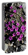 Lavender In The Rocks Portable Battery Charger