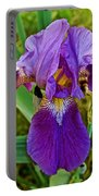 Lavender Iris At Pilgrim Place In Claremont-california  Portable Battery Charger