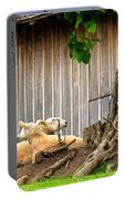 Lawnmowers At Rest Portable Battery Charger