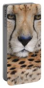Lazy Cheetah Portable Battery Charger