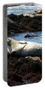 Lazy Seal Portable Battery Charger