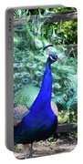 Le Peacock Portable Battery Charger