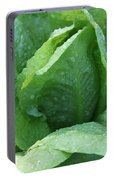 Leaf Lettuce Part 3 Portable Battery Charger