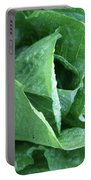 Leaf Lettuce Part 4 Portable Battery Charger