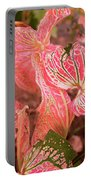 Leaf Of Color Portable Battery Charger
