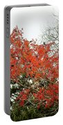 Leafs 005 Portable Battery Charger