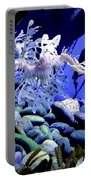 Leafy Sea Dragon Portable Battery Charger by Kelly Mills
