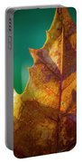 Leaves 971 Portable Battery Charger