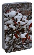 Leaves And Powery Snow Portable Battery Charger
