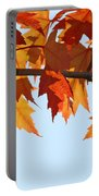 Leaves Autumn Orange Sunlit Fall Leaves Blue Sky Baslee Troutman Portable Battery Charger
